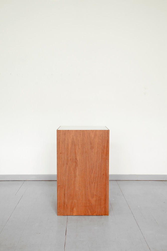 INES | Paul Altmann | 2014