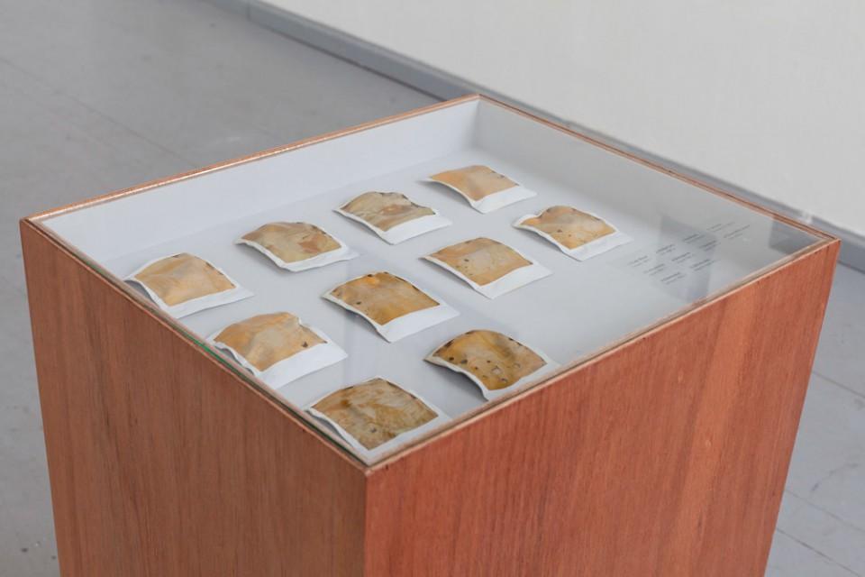 Paul Altmann, INES, deformierte Polaroids + Vitrine (Holz, Glas. Siebdruck), 50 x 60 x 100 cm (t x b x h), 2014. Paul Altmann, INES, deformed Polaroids + vitrine (wood, glass, silk screen), 50 x 60 x 100 cm, 2014.