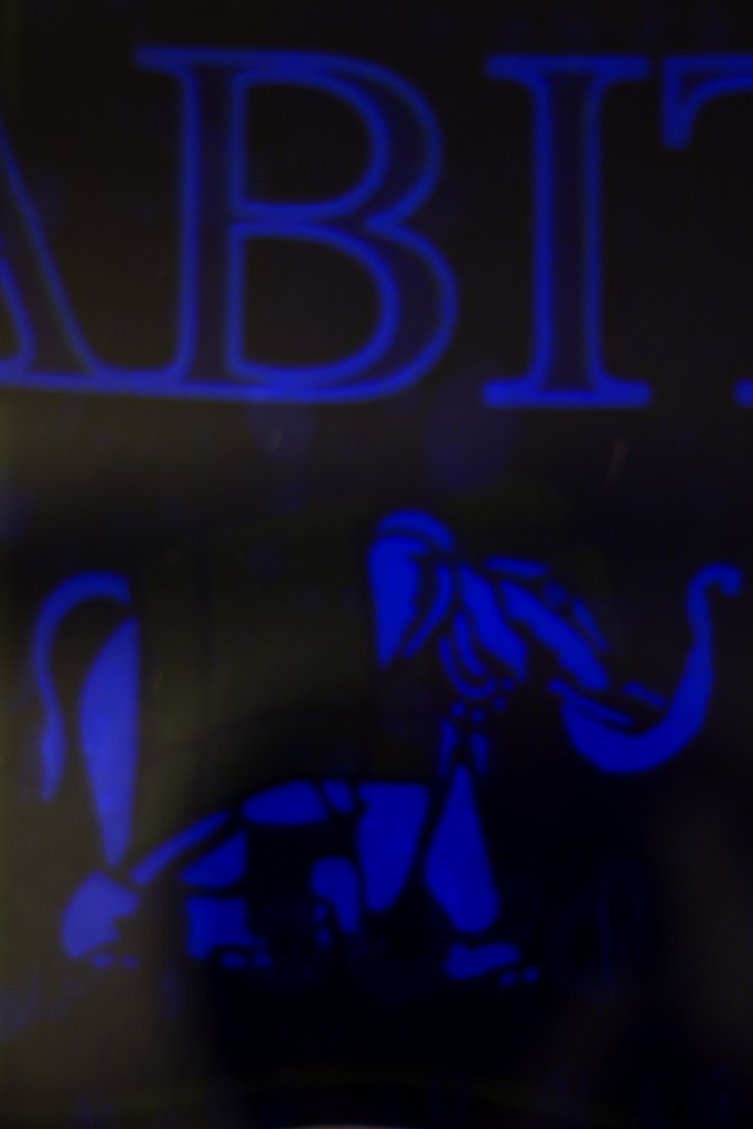 blue detail_s